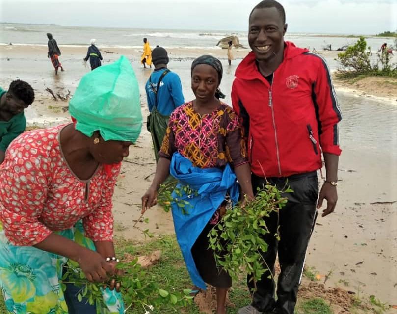 plantation sur la plage de Diogué