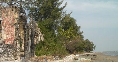 Plage sud de Diogué